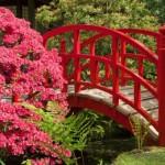 Décoration des jardins japonais - 2