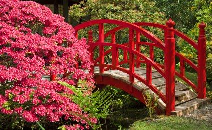 D coration des jardins japonais 2 d co for Decoration de jardin japonais