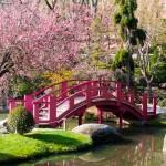 Décoration des jardins japonais - 7