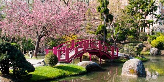 D coration des jardins japonais d co for Decoration jardin japonais