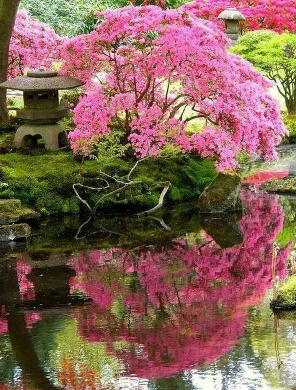 D coration des jardins japonais 8 d co - Decoration de jardin japonais ...