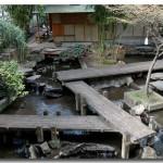 Décoration des jardins japonais - 9