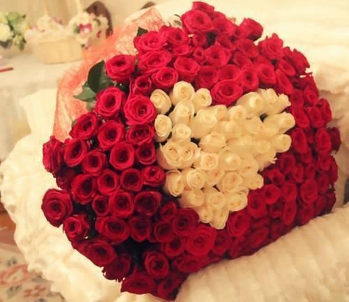 Fleurs Rouges Decoratives Deco