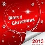 Photos pour la New Year... Bonne année 2013 - 1
