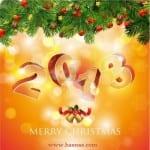 Photos pour la New Year... Bonne année 2013 - 2