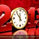 Photos pour la New Year... Bonne année 2013 - 6