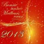 Photos pour la New Year... Bonne année 2013 - 9