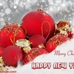 Photos pour la New Year... Bonne année 2013 - 19