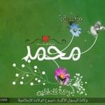 صور جميله لعيد المولد النبوى 2013 - 16