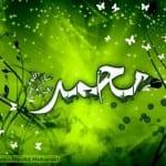 صور جميله لعيد المولد النبوى 2013 - 5