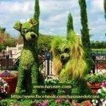 صور جميلة لتماثيل مصنوعة من الاعشاب والازهار 1