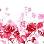 صور خلفيات جميله لعيد الحب - 5