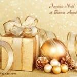 Belles Photos pour Noël 2014 - 4