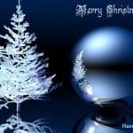 Belles Photos pour Noël 2014 - 5