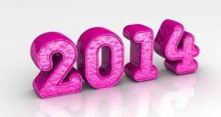 Belles Photos pour la New Year... Bonne année 2014 - 3