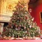 Belles Photos de Décoration du Sapin de Noel 2014 - 2