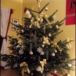 Belles Photos de Décoration du Sapin de Noel 2014 - 3