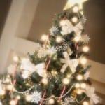Belles Photos de Décoration du Sapin de Noel 2014 - 5
