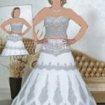 فساتين عروس 2014 شرقية - 4