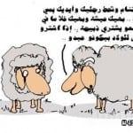 كاريكاتير عيد الاضحى 2014 - 5