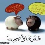 كاريكاتير عيد الاضحى 2014 - 7