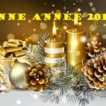 Photos et Cartes Noël 2015 - 1