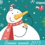 Photos et Cartes Noël 2015 - 3