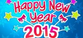 صور روعة بمناسبة رأس السنة 2015