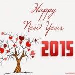 صور روعة بمناسبة رأس السنة 2015 - 5