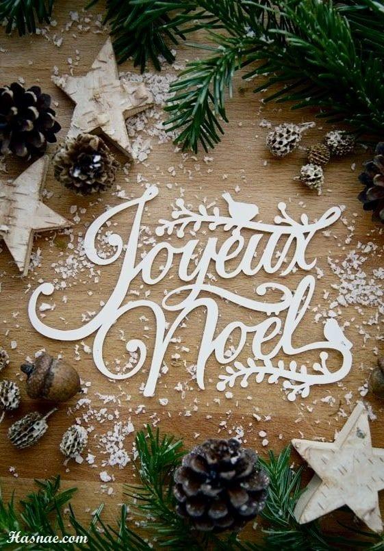 Belles photos Noël 2017 - 1