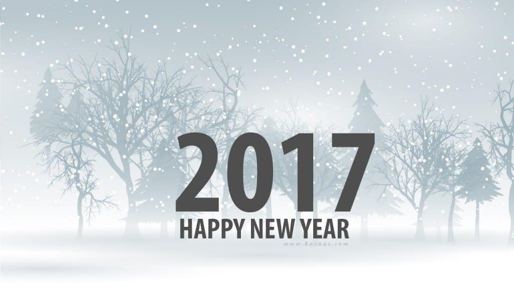 صور جميلة رأس السنة 2017 - 6