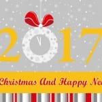 صور جميلة رأس السنة 2017 - 8