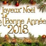 Très belles photos pour Noël 2018 - 8